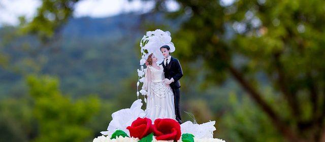 Gdzie kupić figurki na tort weselny
