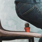 Zioła i herbatki wspomagające odchudzanie- czy naprawdę działają?